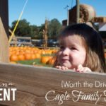 {Worth the Drive} Cagle's Family Farm