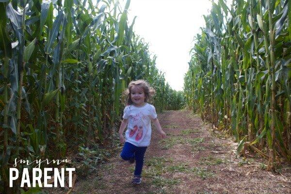Corn WM