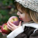 U-Pick Apple Orchards