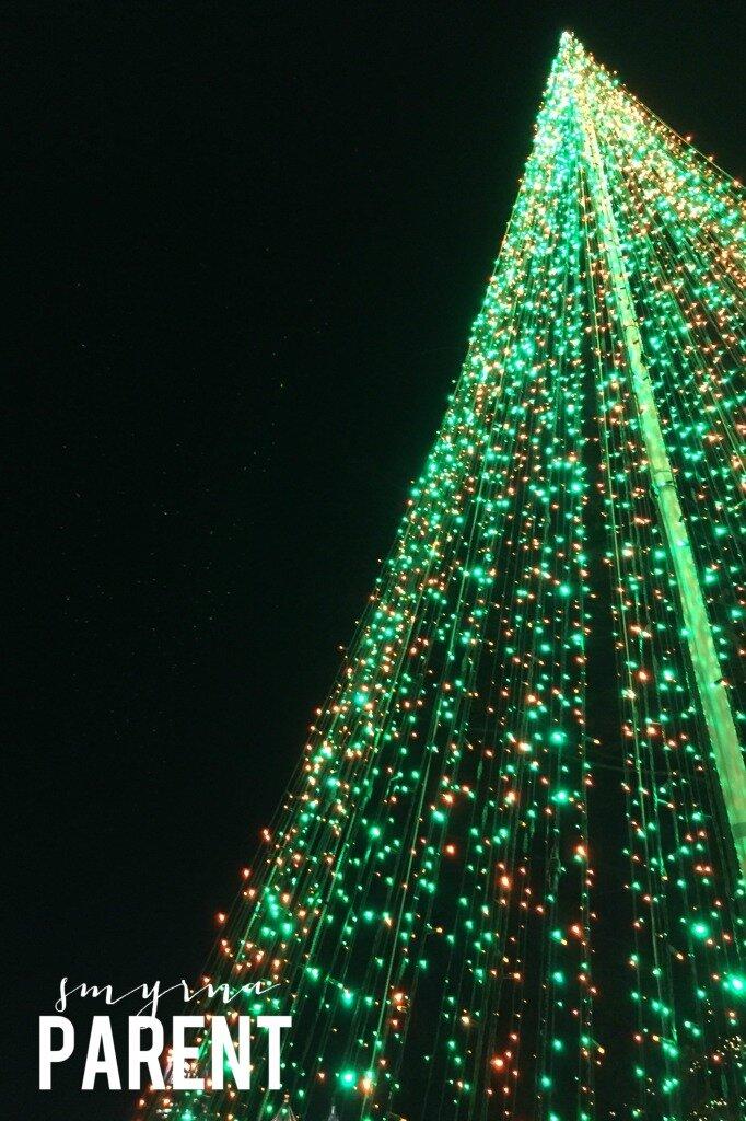 Light Tree2WM